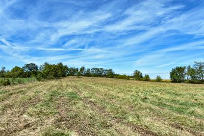 Johnstown Residential Lots & Land For Sale: 8905 Croton Road