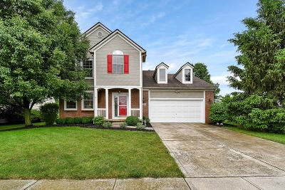 Westerville Single Family Home For Sale: 6654 Deagle Drive