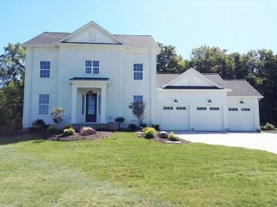 Delaware Single Family Home For Sale: 1811 Liberty Bluff Drive