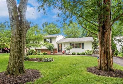 columbus Single Family Home For Sale: 341 Canyon Drive N