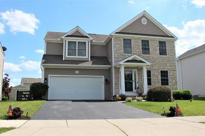 Delaware Single Family Home For Sale: 481 Cobblestone Drive