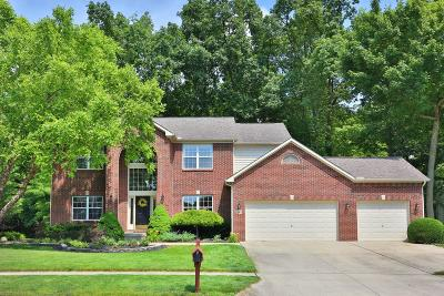 Lewis Center Single Family Home For Sale: 2663 Tucker Trail