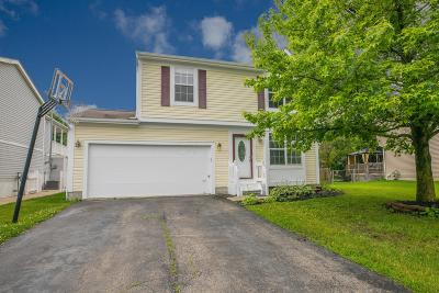 Hilliard Single Family Home For Sale: 5255 Springdale Boulevard