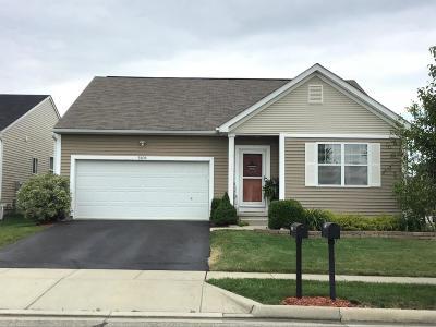 Single Family Home For Sale: 5906 Ballydugan Drive