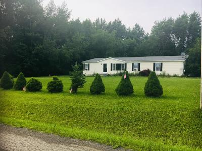 Fredericktown Single Family Home For Sale: 7117 County Road 183