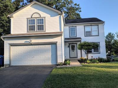 Delaware Single Family Home For Sale: 602 Ablemarle Circle W