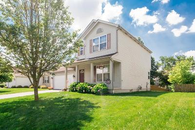 Hilliard Single Family Home For Sale: 5825 Wooden Plank Road