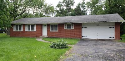 Grove City Single Family Home For Sale: 1875 White Road