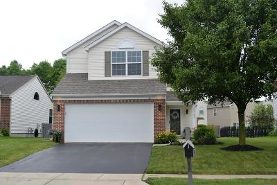 Hilliard Single Family Home For Sale: 5797 Annmary Road