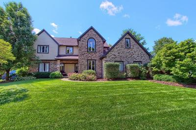 Westerville Single Family Home For Sale: 711 Lookout Ridge Drive