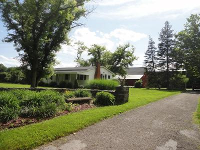 Delaware Single Family Home For Sale: 6842 Olentangy River Road