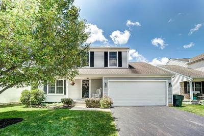 Lewis Center Single Family Home For Sale: 8587 Smokey Hollow Drive