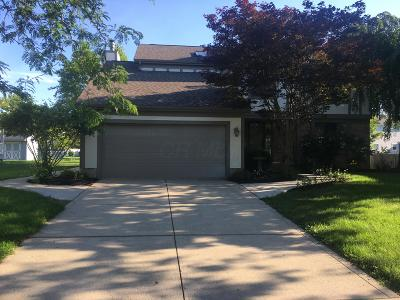 Grove City Single Family Home For Sale: 1378 River Trail Drive