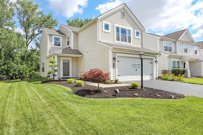 Blacklick Single Family Home For Sale: 7926 Birch Creek Drive