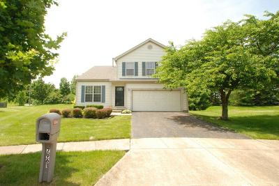 Blacklick Single Family Home For Sale: 7961 Windsome Court