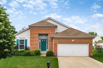Blacklick Single Family Home For Sale: 8586 Old Field Birch Drive