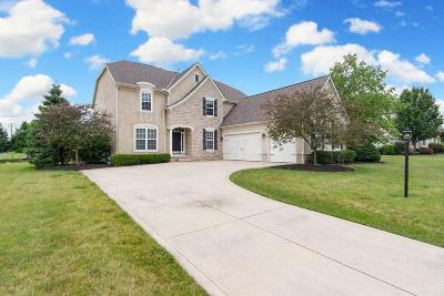 Single Family Home For Sale: 4322 Hickory Rock Drive