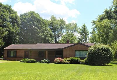 Dublin Single Family Home For Sale: 3259 Martin Road