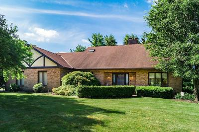 Columbus Single Family Home For Sale: 6315 Olde Orchard Drive