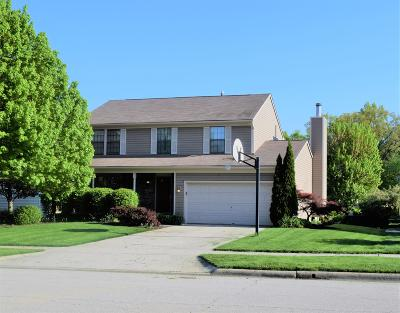 Powell Single Family Home For Sale: 226 Meadow View Drive