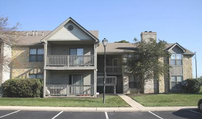 Columbus Multi Family Home For Sale: 2750 Greystone Drive #GD2750