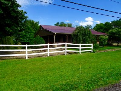 Amanda Single Family Home For Sale: 9186 Chillicothe Lancaster Road SW