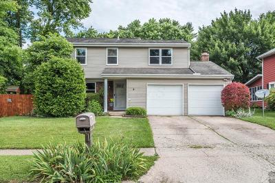 Dublin Single Family Home For Sale: 3182 Cranston Drive