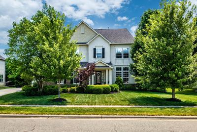 Lewis Center Single Family Home For Sale: 1875 Little Bear Loop