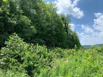 Utica Residential Lots & Land For Sale: Stout Road