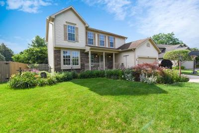 Westerville Single Family Home For Sale: 350 Harrogate Court