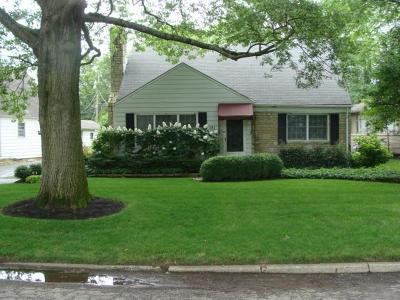 Single Family Home For Sale: 981 S Broadleigh Road