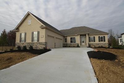 Galena Single Family Home For Sale: 6547 Via Florenza Drive