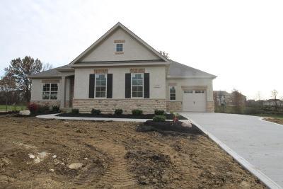 Galena Single Family Home For Sale: 6534 Via Florenza Drive