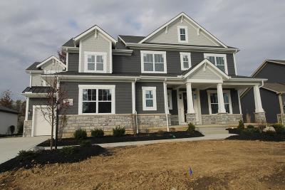 Galena Single Family Home For Sale: 6589 Via Florenza Drive