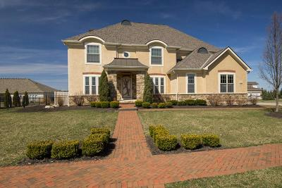 Grove City Single Family Home For Sale: 1562 Pinnacle Club Drive
