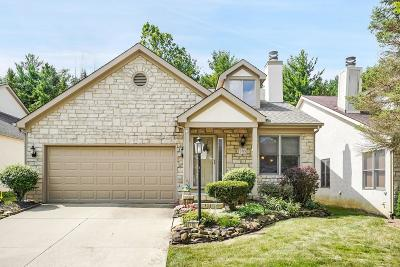 Westerville Single Family Home For Sale: 5713 Forest Grove Avenue