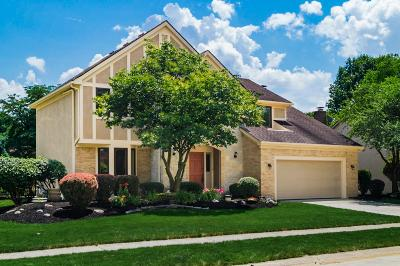 Columbus Single Family Home For Sale: 8252 Spruce Needle Court