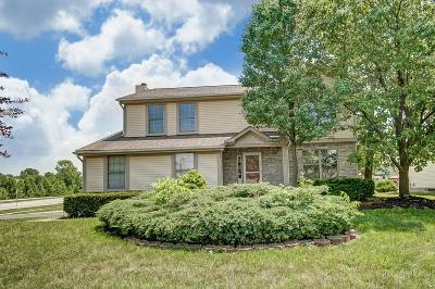 Grove City Single Family Home For Sale: 3534 Lake Mead Drive