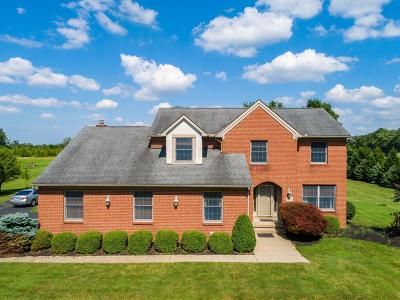 Dublin Single Family Home For Sale: 5308 Cosgray Road
