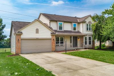 Pickerington Single Family Home For Sale: 849 Dunvegan Court