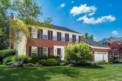 Dublin Single Family Home For Sale: 7057 Violet Veil Court