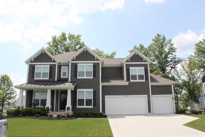 Pickerington Single Family Home For Sale: 13295 Appleton Drive