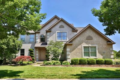 Franklin County, Delaware County, Fairfield County, Hocking County, Licking County, Madison County, Morrow County, Perry County, Pickaway County, Union County Single Family Home For Sale: 6620 Ballantrae Place