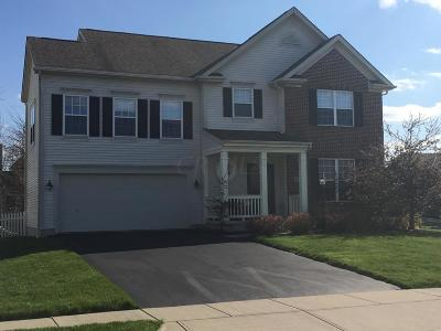 Pickerington Single Family Home For Sale: 315 Pecan Court