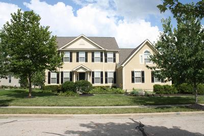Blacklick Single Family Home For Sale: 7429 Trevenia Drive