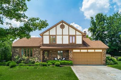 Westerville Single Family Home For Sale: 1289 Chatham Ridge Road