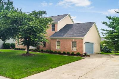 Columbus Single Family Home For Sale: 1007 Ridge Crest Drive