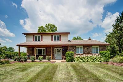 Grove City Single Family Home For Sale: 3423 Rolling Hills Lane