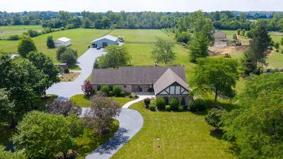 Hilliard Single Family Home For Sale: 8285 Roberts Road