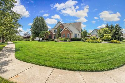 Pickerington Single Family Home For Sale: 8356 Meadowmoore Boulevard
